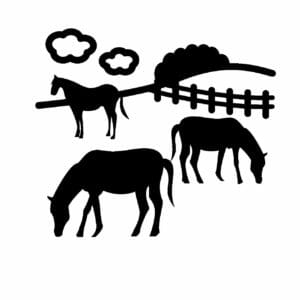 放牧の画像